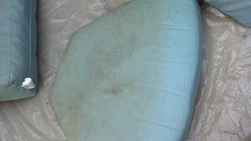 PTC Upholstery Cleaning