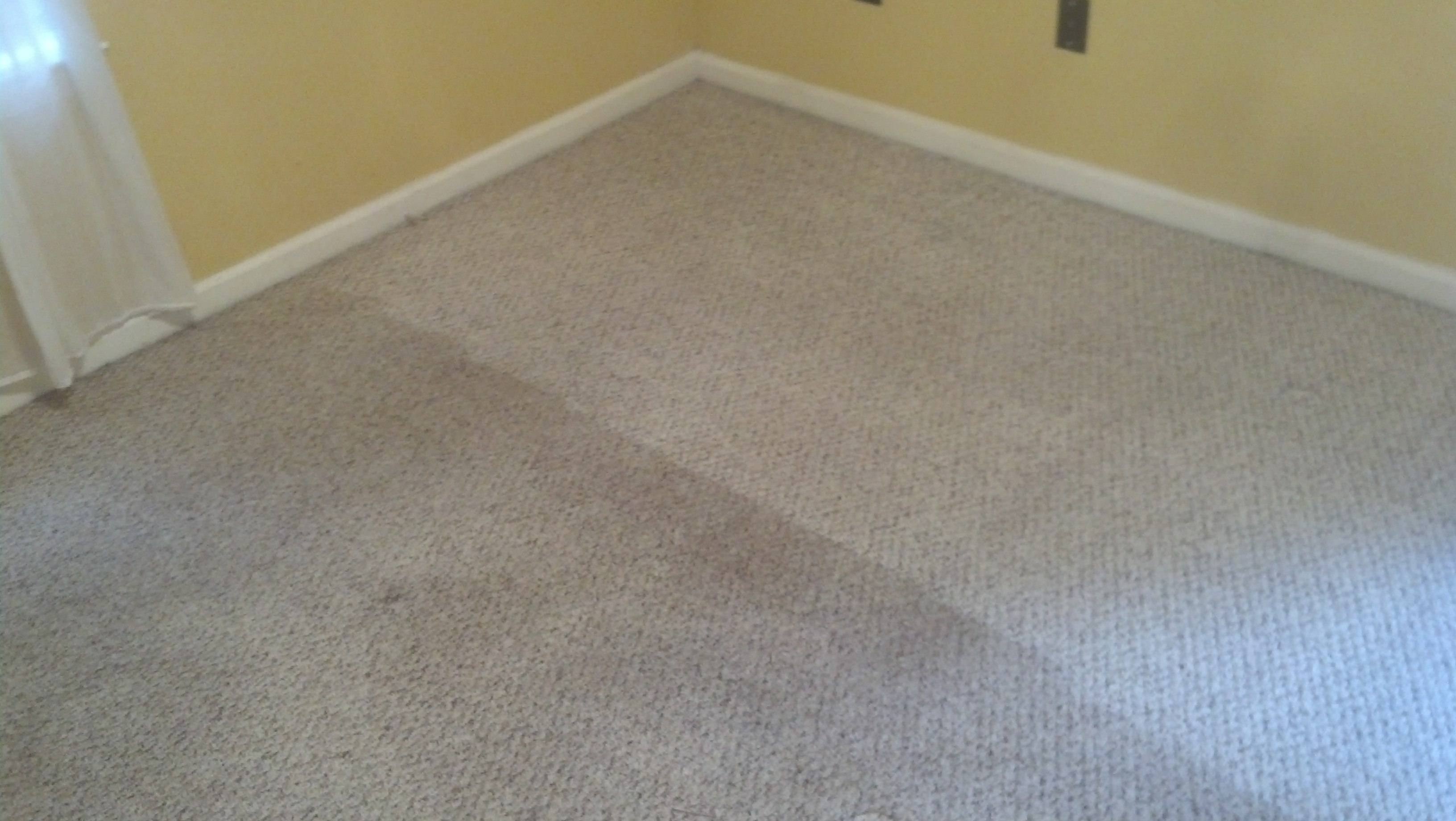 Carpet Cleaning Company Peachtree City Fayetteville
