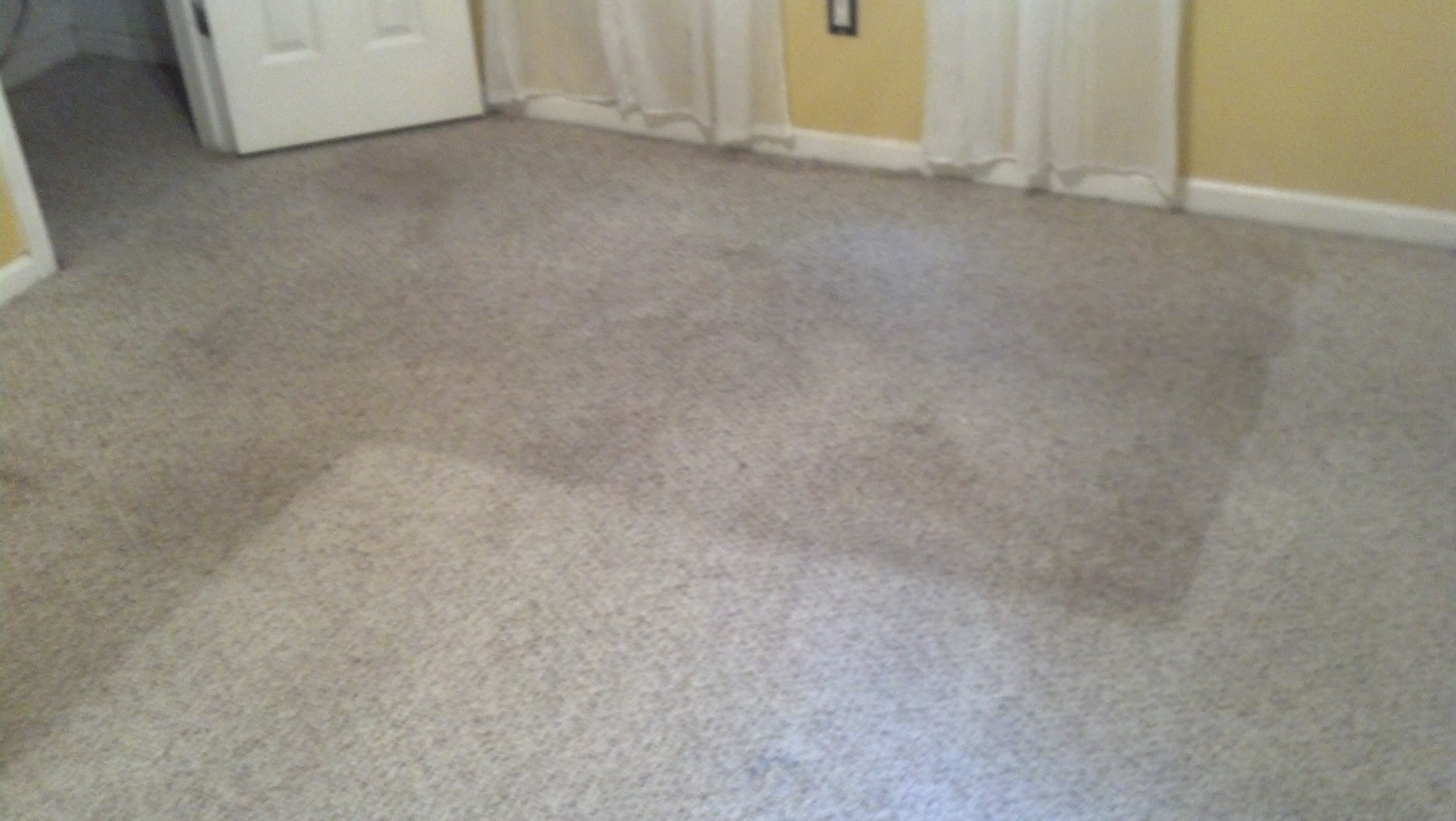Berber Carpet Cleaning Peachtree City