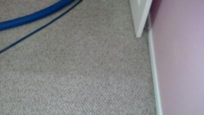 berber carpet cleaners