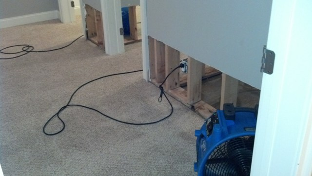 McDonough carpet cleaning and water damage