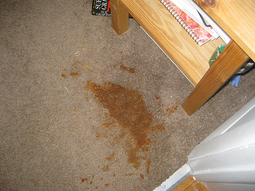 top most common carpet stains
