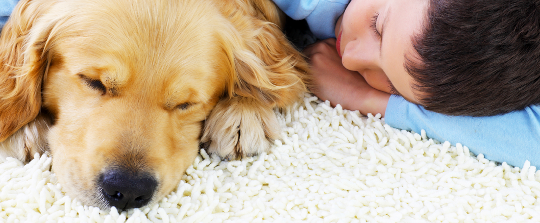 kids and dog carpet